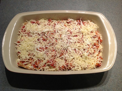 17-lasagna-layer9