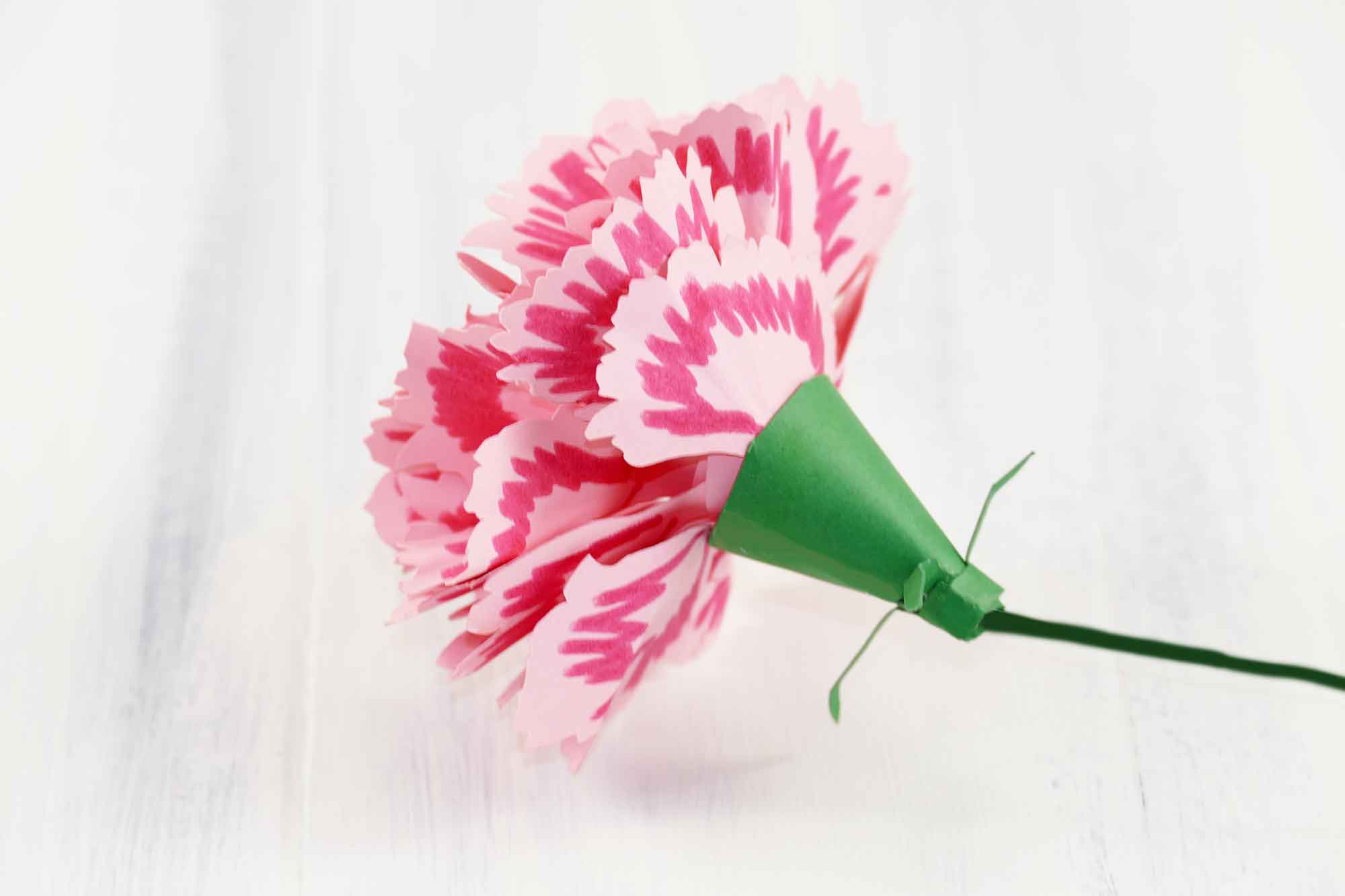 paper carnations You can make paper carnation flowers out of various materials, with crepe paper, tissue paper, and printer paper being the most popular choices once you're comfortable with the paper crafting process, try other materials, such as fabric or felt, for an even more unique project.