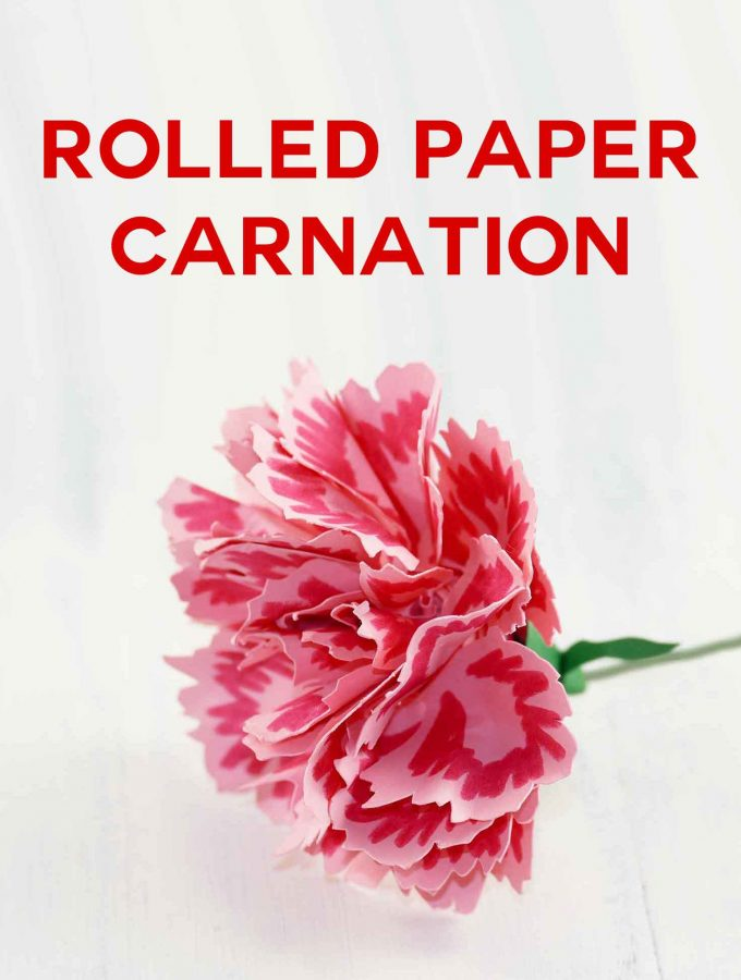 Rolled Paper Carnation | Quilled Flower | JenuineMom.com