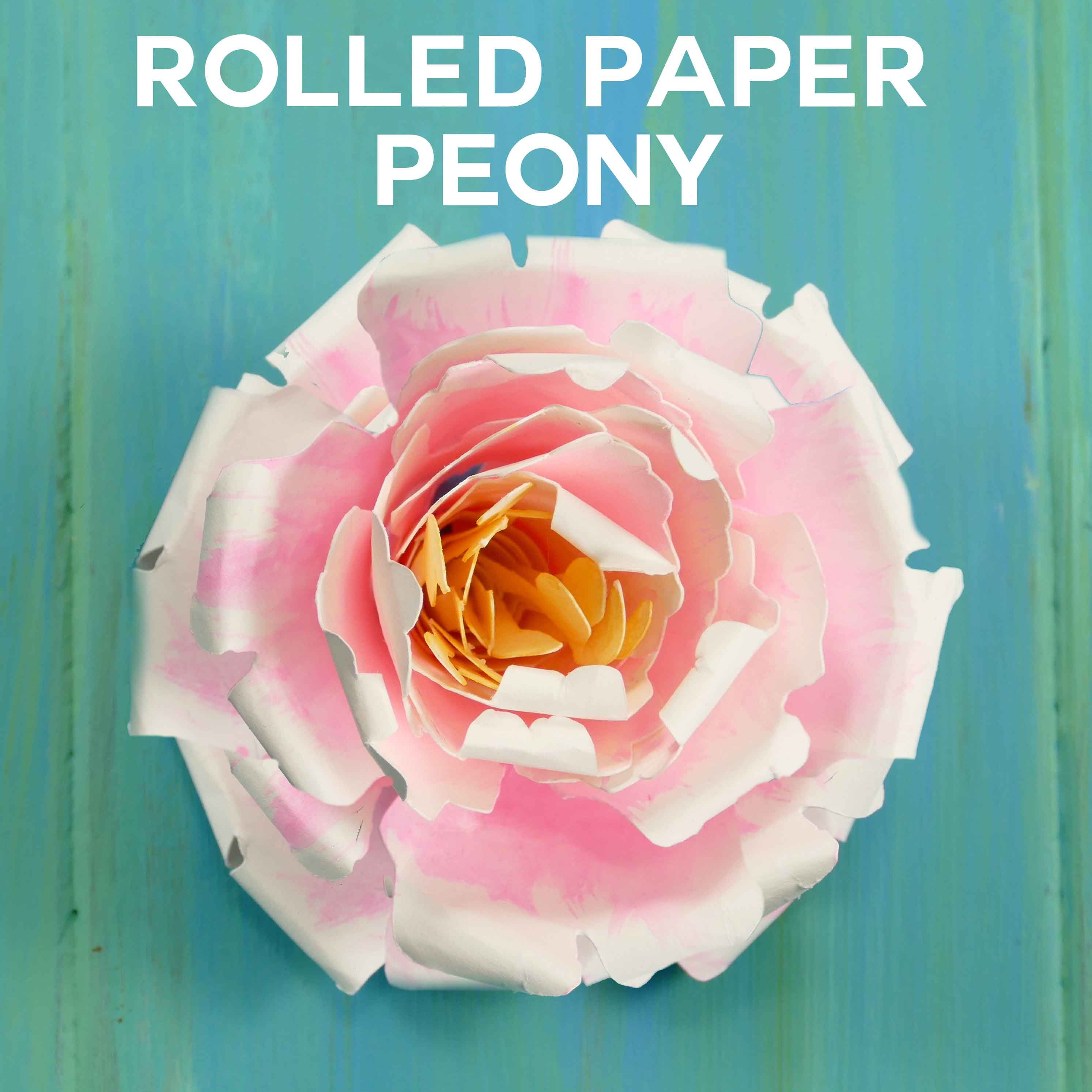Rolled Paper Peony Flower | Quilled Flower | JenuineMom.com