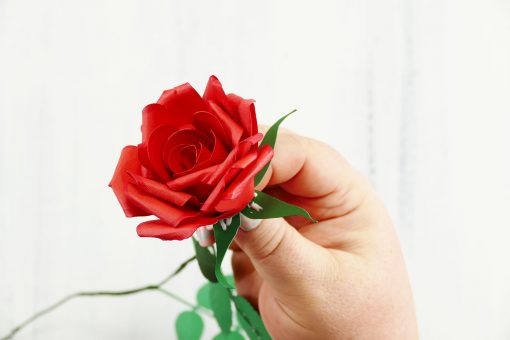 Rolled paper rose tutorial fun realistic jennifer maker rolled paper rose flower quilled flower jenuinemom save save mightylinksfo