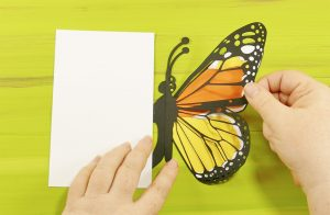 Assembling the pop up butterfly card