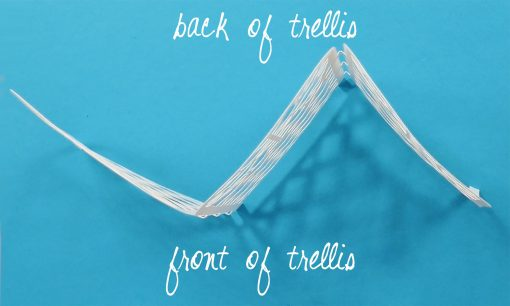 Your paper trellis can stand on its own after folding
