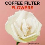 How to Make Coffee Filter Flowers | Tutorials