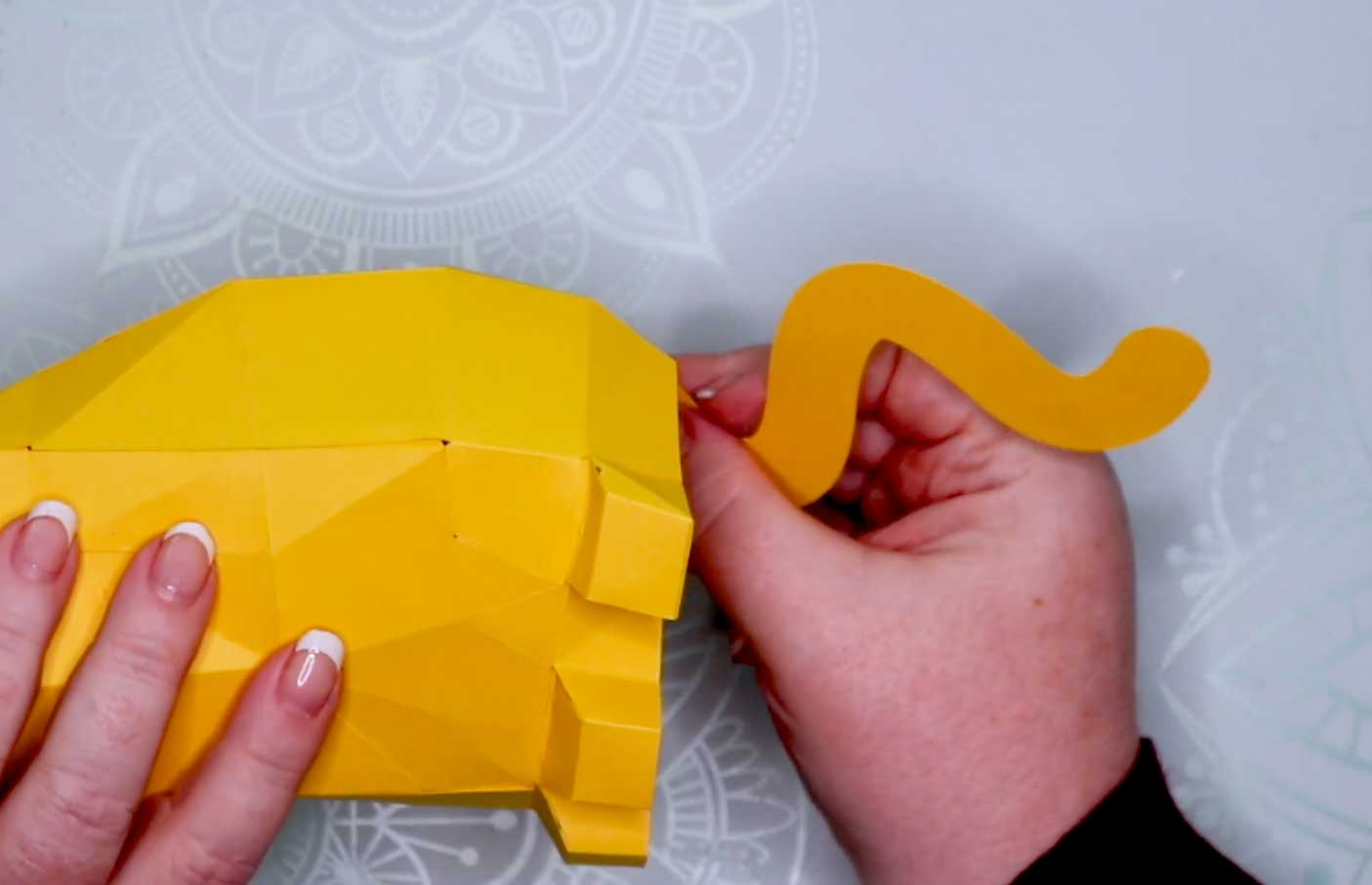 Gluing the tail to the 3D Cat