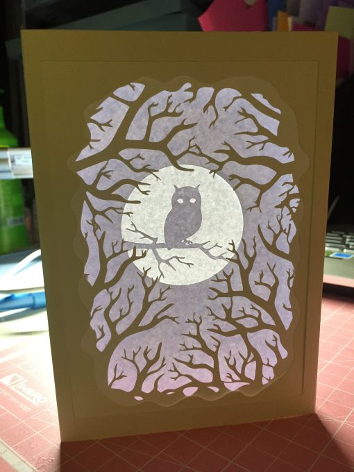Owl Shadow Box Card made by Daniella Harel and designed by Jennifer Maker
