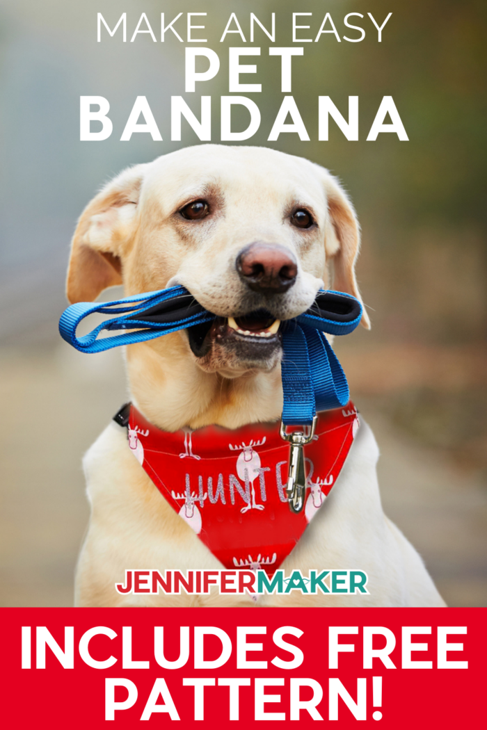 Aqua and Pink Leaf Through-the-Collar Dog Bandana