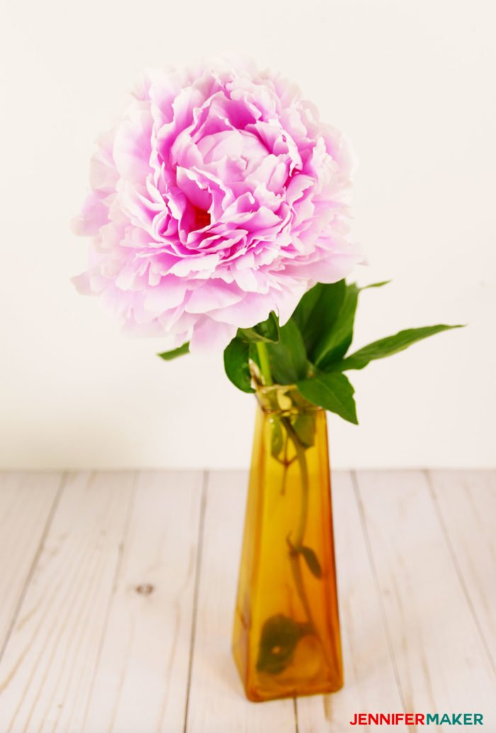 A delicate pink Sarah Bernhardt peony flower in a vase is my inspiration to make crepe paper peony flowers