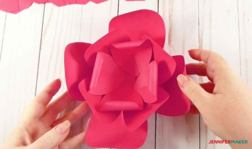 The three layers of four-petal groups of the giant paper flower