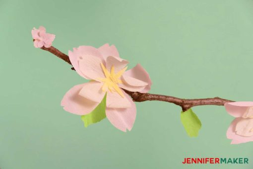 Make paper cherry blossom flowers for spring jennifer maker crepe paper cherry blossom flower on a real branch mightylinksfo