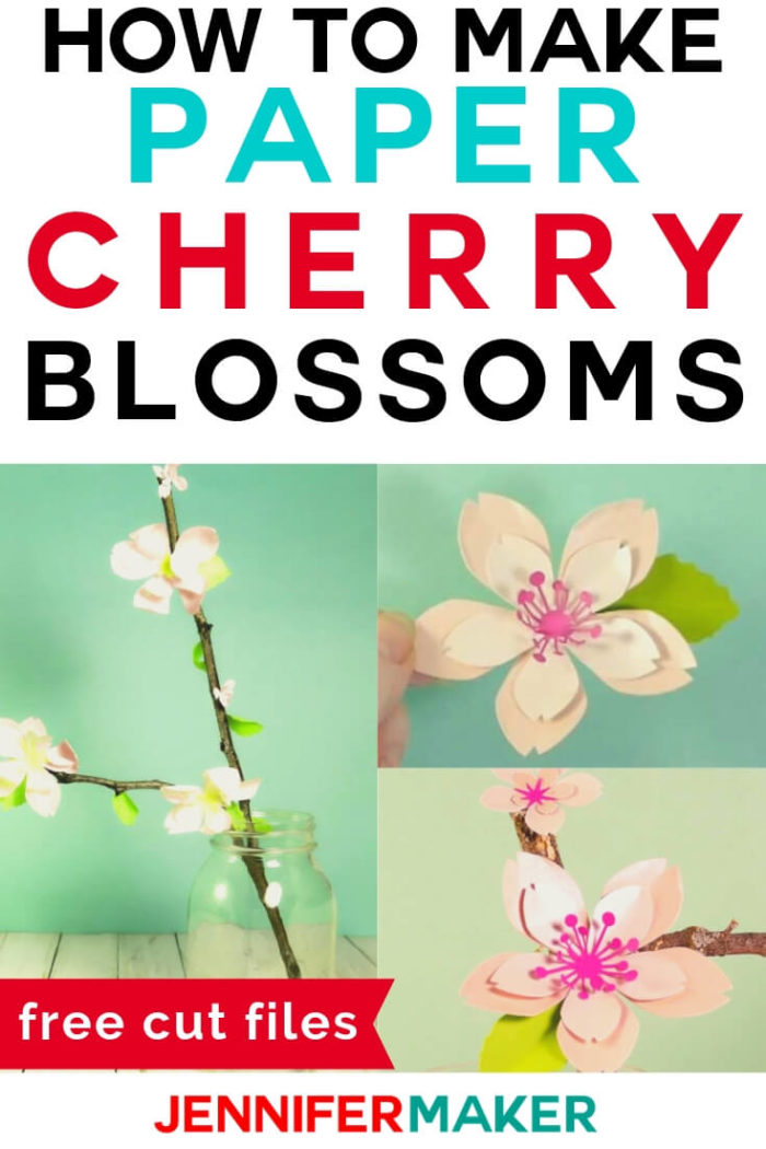 Paper cherry blossoms are the perfect way to bring spring indoors and enjoy these flowers for months. #cricut #cricutmade #cricutmaker #cricutexplore #svg #svgfile