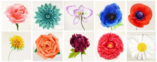 The paper flowers you can create from the Paper Flowers Book