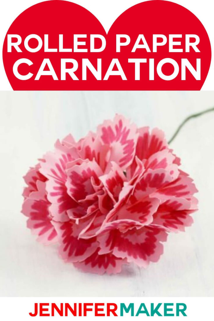 Make a pretty rolled paper carnation, complete with sepal and stem! Every petal is unique in the free pattern and SVG cut file. #cricut #cricutmade #cricutmaker #cricutexplore #svg #svgfile